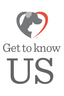 21st Century Animal Healthcare - Get to Know Us